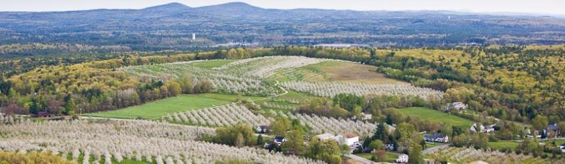 Spring Fields landscape